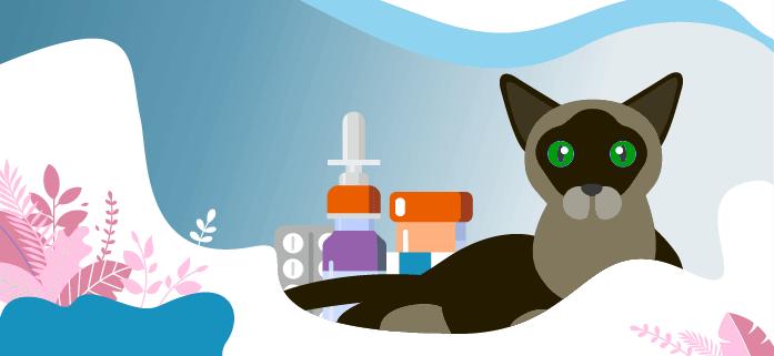cat-antihistamines.png